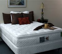 5504 Silver Lining Pillow Top